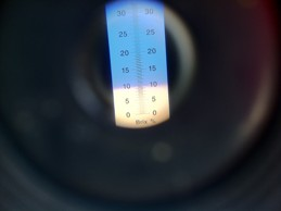 refractometer-brix-reading