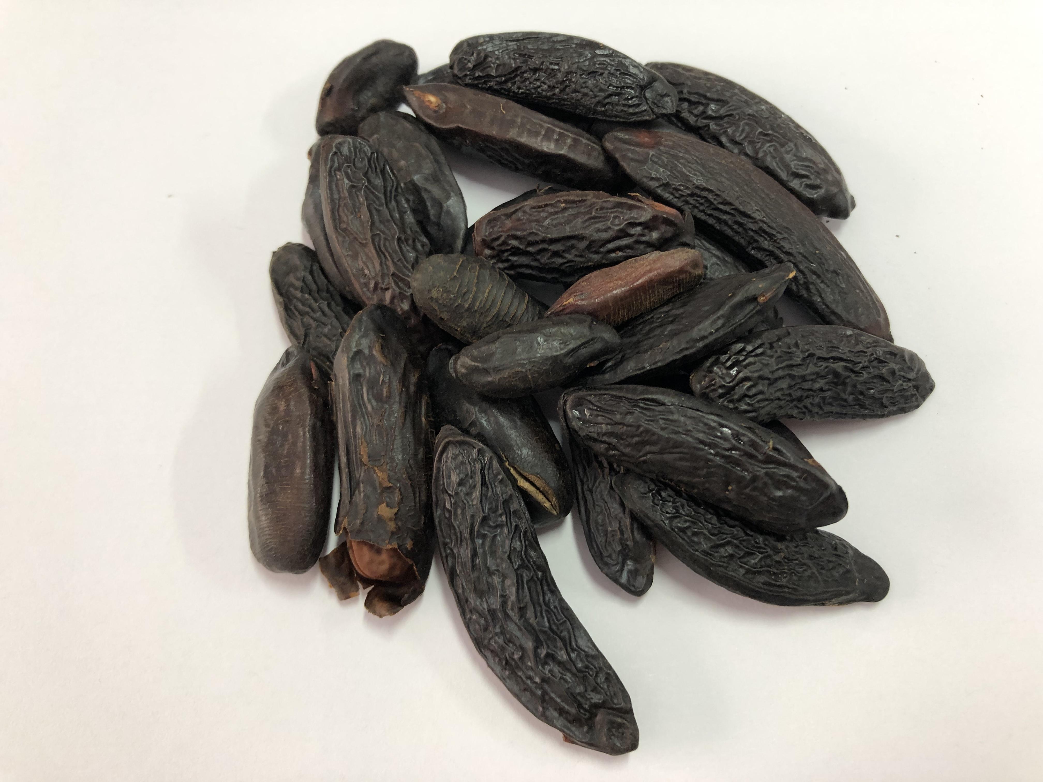 semente de cumaru