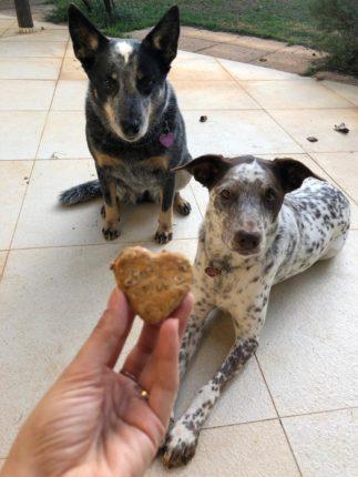 biscoito de malte