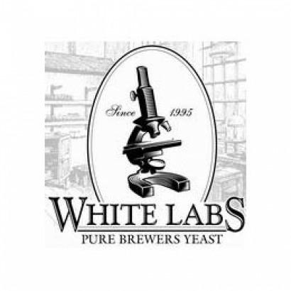 Fermento White Labs - WLP007 - Dry English Ale