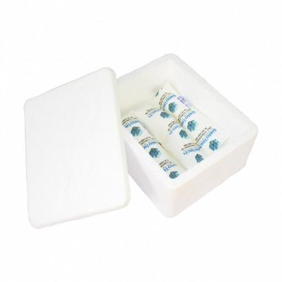 Kit Icepack + caixa térmica