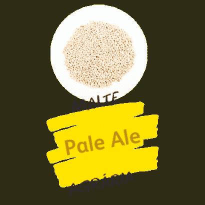 Malte Pale Ale Agrária - Nacional