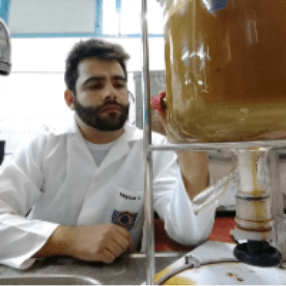 Workshop Online de Hidromel e Fermentados de Mel de Abelhas