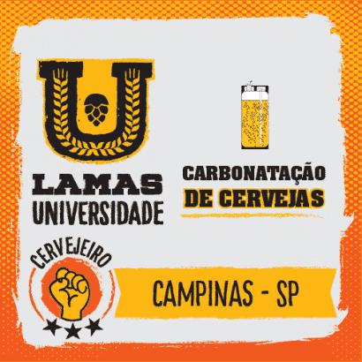 Curso Prático de Carbonatação de Cervejas - Campinas/SP