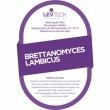 Fermento Levteck - Teckbrew Brettanomyces Lambicus