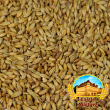Malte  Castle Malting - Cara Clair
