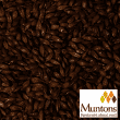 Malte Muntons - Chocolate Light