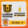 Curso Prático de Carbonatação de Cervejas - SÃO PAULO/SP